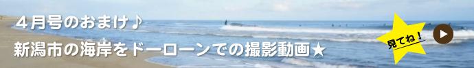 新潟市海岸