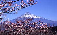 名刹と富士山眺望コース