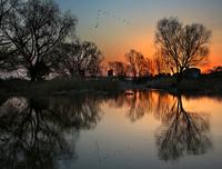 早朝の多摩川畔