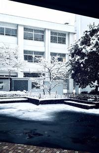 ひとりぼっちと雪の空