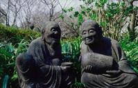 浄慶寺の春