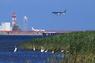 【川崎区】【第63回 令和元年度】 一般の部 入賞 河口は鳥の楽園