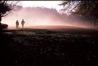 朝霧踏んで