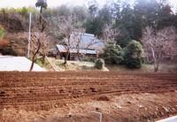 川崎に残る田園風景