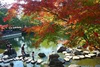 紅葉の等々力公園