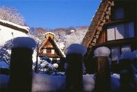 冬の民家園