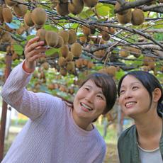 Let's harvest autumn taste! Autumn two major Flavor hunting♪