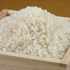 秋の収穫祭!お土産買って、お米をGET☆