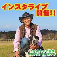 11月29日(日)15:30頃から「インスタライブ」開催!