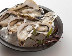 全国旬の産地から厳選!生牡蠣・焼き牡蠣・牡蠣フライ食べ放題プラン