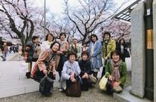 靖国神社の桜と
