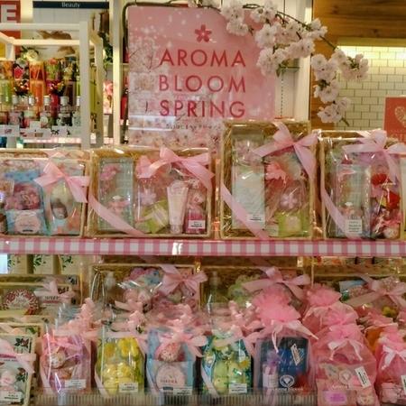桜のギフトで新生活を応援!!