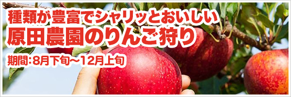 原田農園のりんご狩り