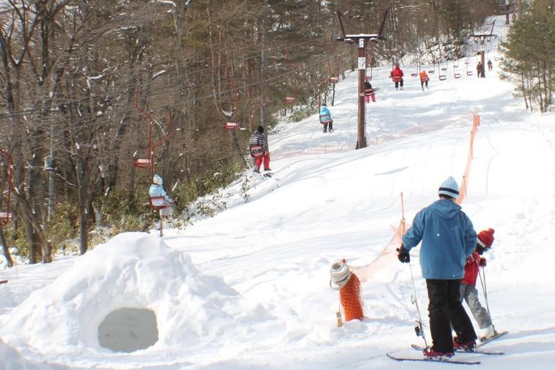 【プライベートゲレンデ『森のスキー場』】今シーズンの営業終了
