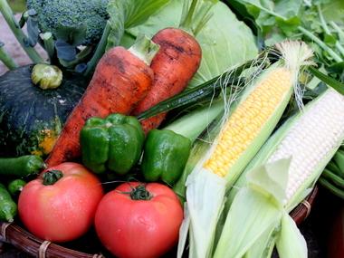 高原野菜朝市の開催について
