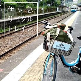 Izukyu cycle train