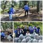 6月26日に「三保松原の清掃活動」に参加してきました。