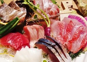 駿河湾の天然地魚