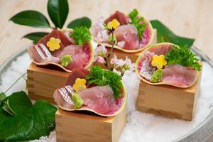 天然南鮪と旬の地魚のお造り盛り合わせ付きビュッフェパーティプラン【120分飲み放題付き】